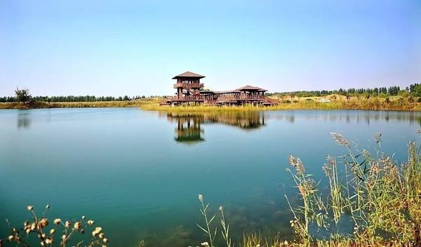 青岛将出台湿地保护条例 这些湿地公园值得一去
