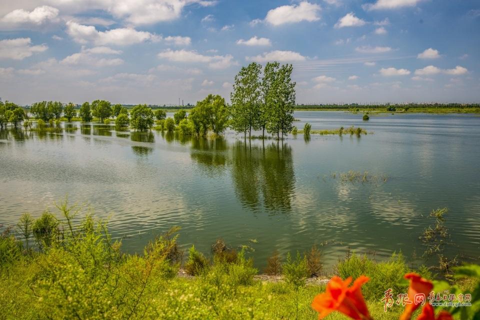 断流近五年 大沽河如今碧波荡漾重焕生机