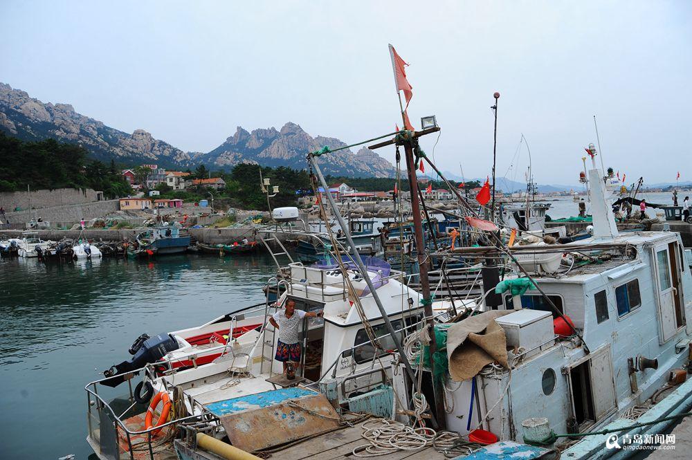 高清:初秋这条线游崂山 半天看尽渔家之美