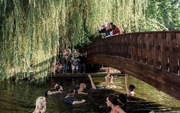 美国一男子桥上求婚遇尴尬 价值2万元戒指落水