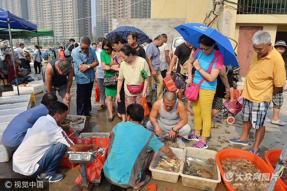 组图:青岛渔民捕获野生虾王 26公分仅售50元