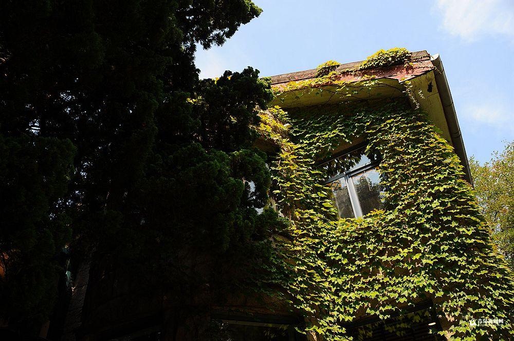 高清:藏在八大关里的低调老楼你见过几栋
