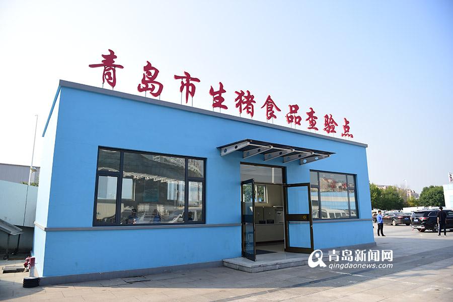 """节前探青岛""""菜篮子"""":政府储备肉菜9000吨"""