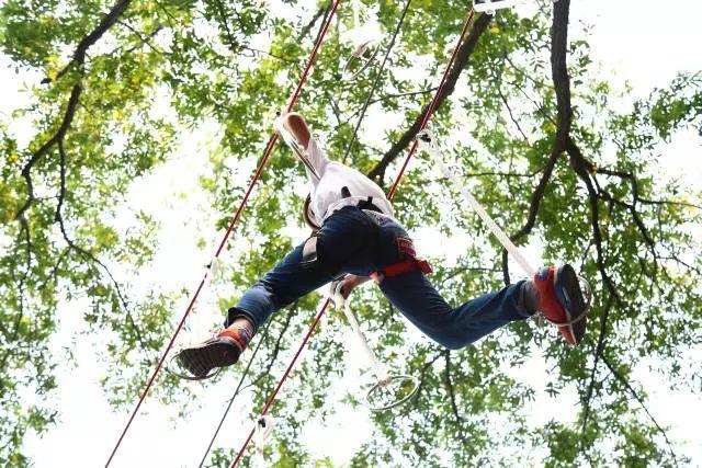 快乐猴丛林穿越位于青岛森林野生动物世界,是一种刺激,具有探险性质的