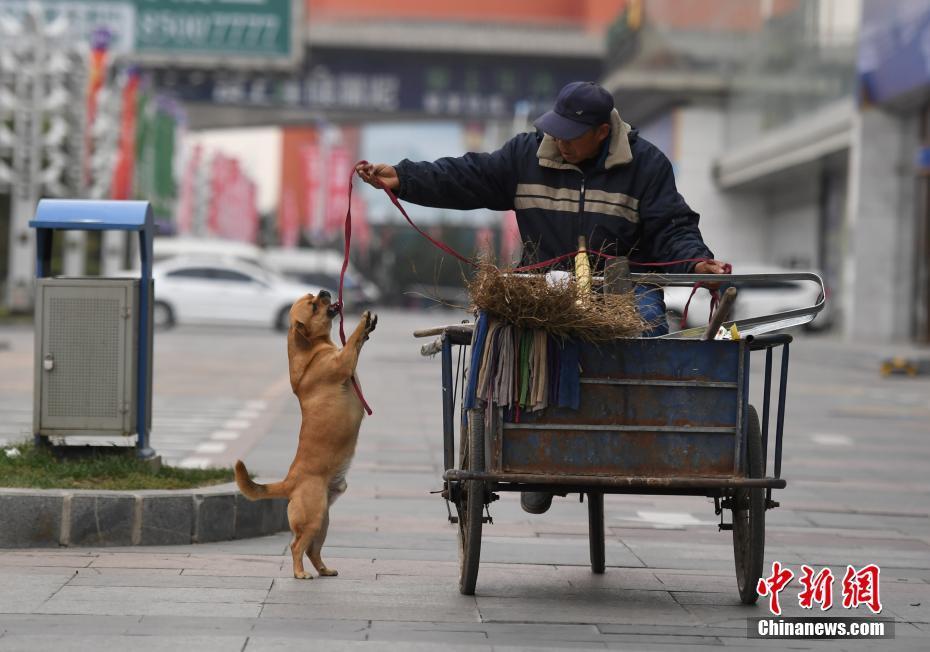 长春忠犬帮清扫工主人捡垃圾三年