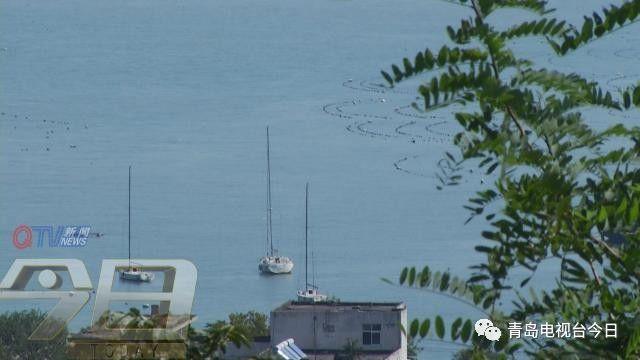 美出新高度 航拍视角看青岛秋日美景