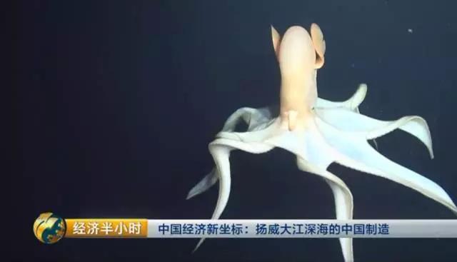 """""""蛟龙号""""完成超6000米深海回收 再次远甩外国"""