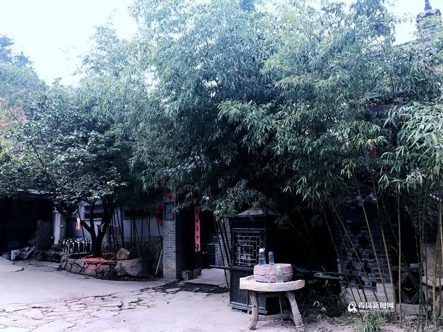 解密青岛乡村游 拓展深度挖掘特色产业(组图)