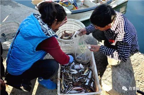 比市场价还便宜!这个买鱼宝地偷偷藏在市区里