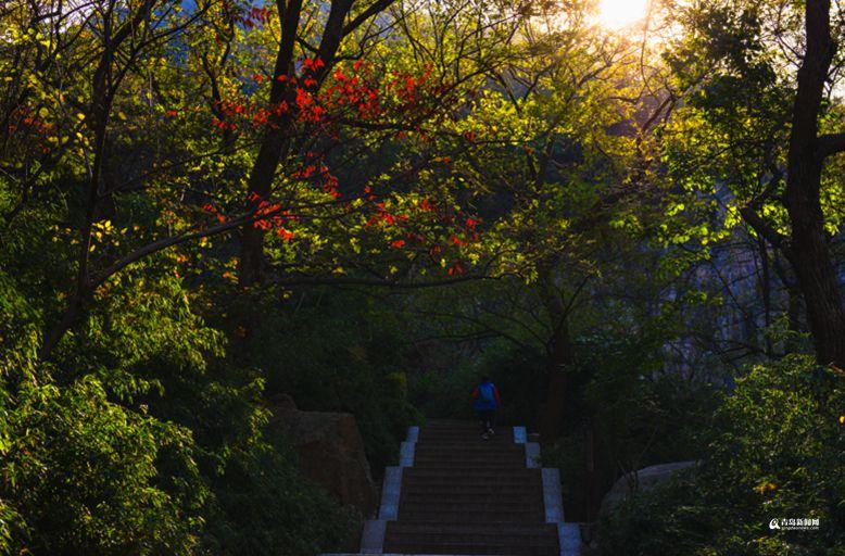 高清:北九水彩叶季迎观赏佳期 美景入画来