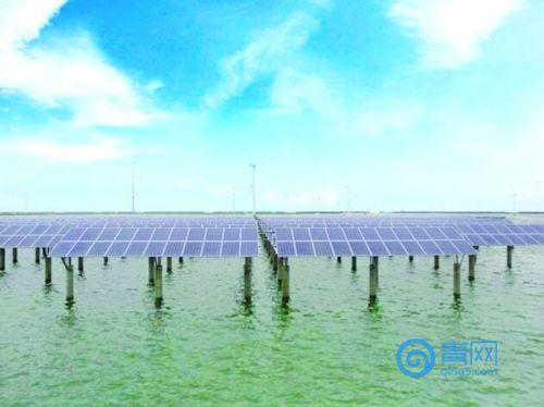 赞!青岛首个渔光一体光伏发电项目并网发电