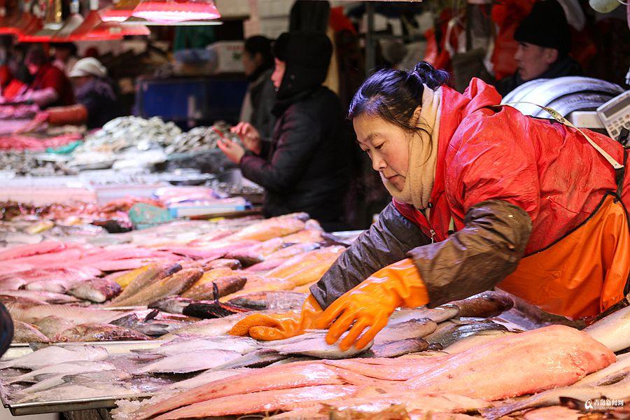 高清:腊月里逛市场买海鲜 种类太多看花眼