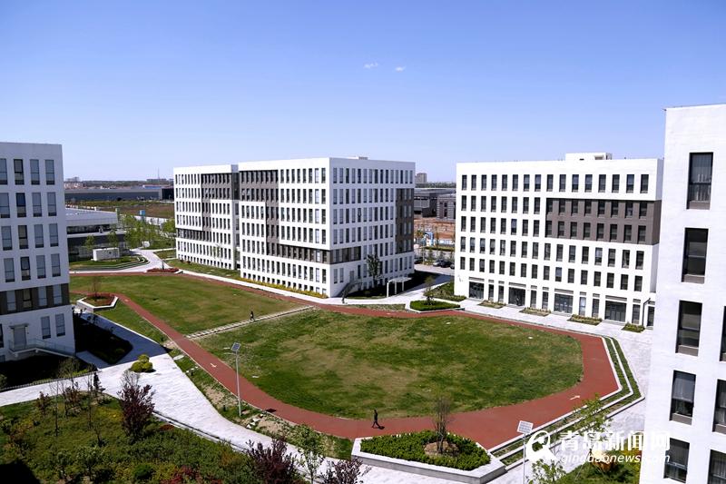 少海汇总部青岛有住智能家居产业园 巨大潜力 到2020年拉动万亿产业图片