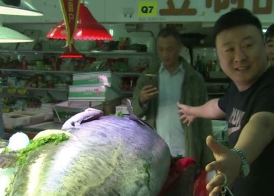 """罕见!青岛现280多斤""""鲅鱼王"""" 体长超两米半(图)"""