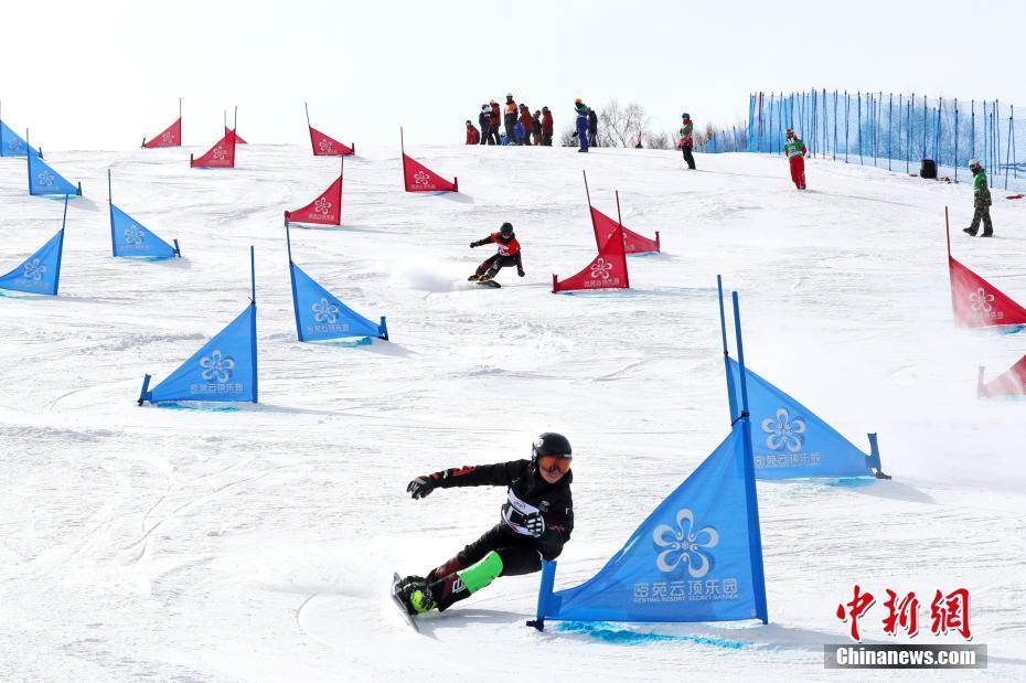 国际雪联单板滑雪平行项目世界杯宫乃莹摘金实现突破