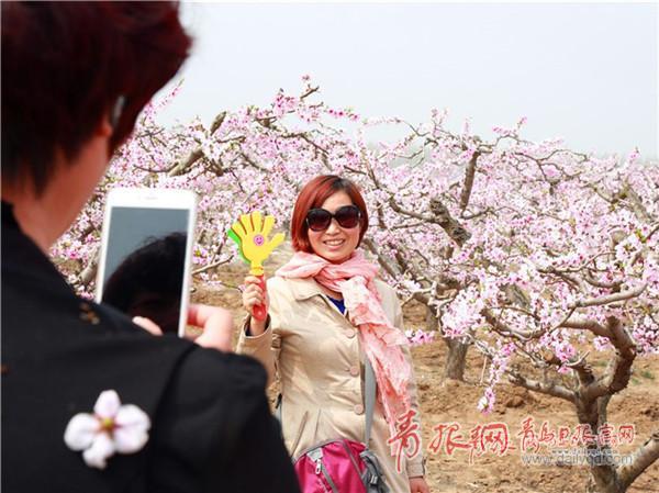 相约春邂逅桃花朵朵开 青岛发布第7期花期预报