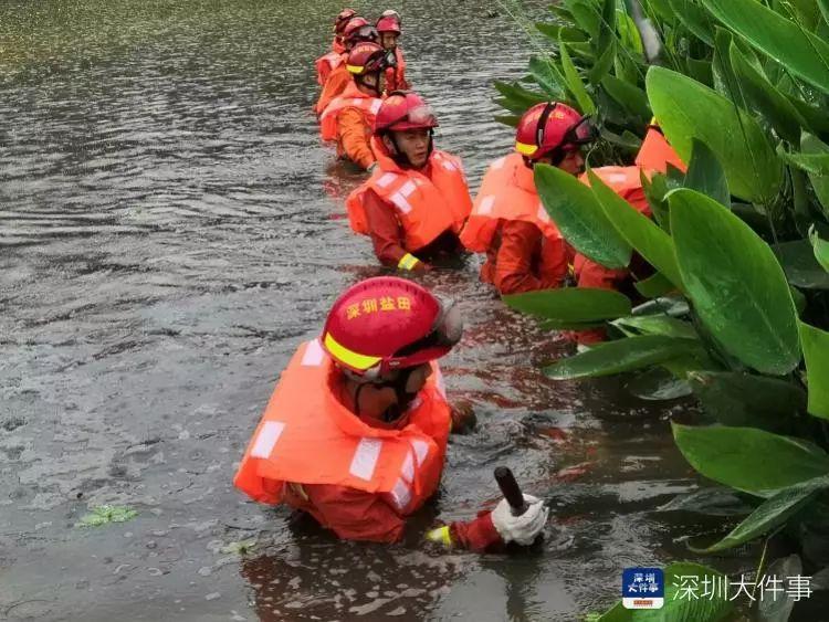 深圳暴雨24小时后:这些镜头,让人揪心