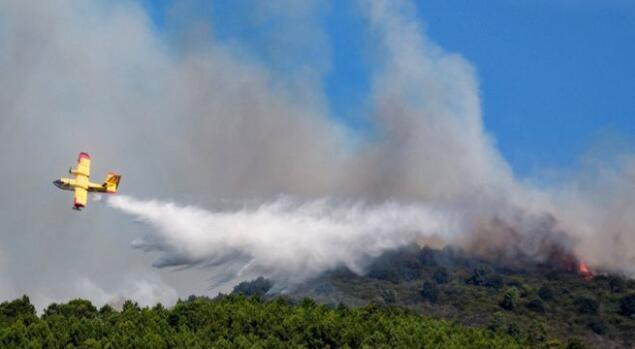 意大利学生烧烤引山火被罚2亿辩称:叫了消防队