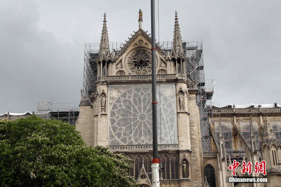 巴黎圣母院应急保护工作加紧进行