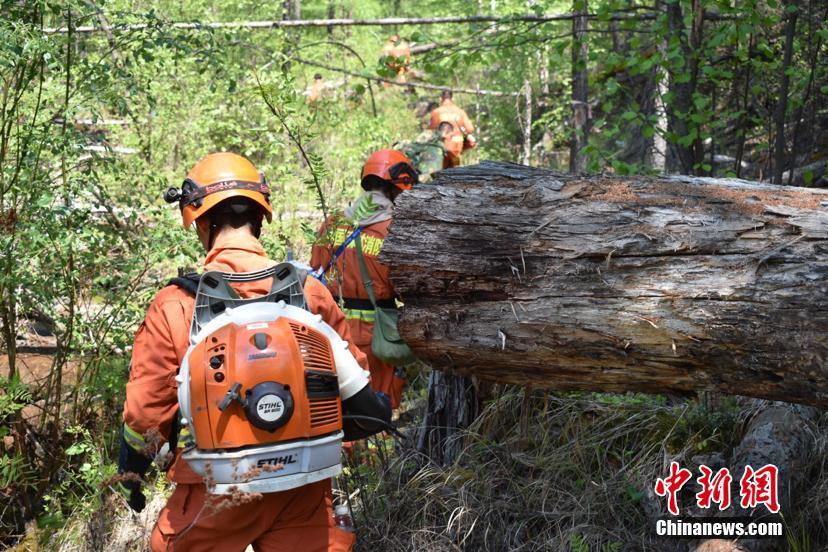 内蒙古大兴安岭林区一日发生三起森林火灾