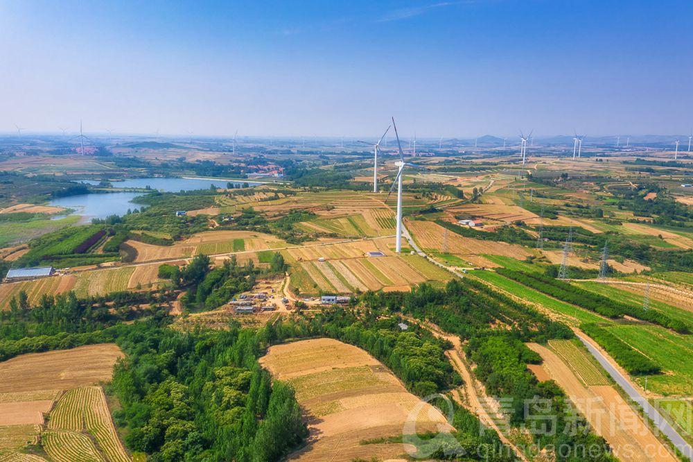 高清:航拍新视界 仲夏青岛 麦收后的乡村景象