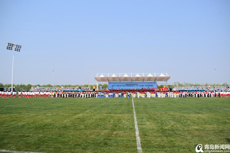青岛积极争取申办亚洲杯 正论证专业球场建设计划图片