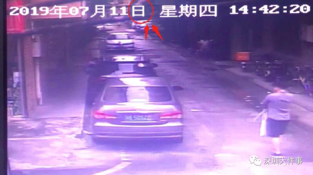 """深圳一小区现""""高空坠狗""""砸烂车窗 主人:狗自己跳的"""