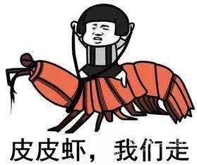 青岛浅海这种小海鲜大量出现!抓捕视频奉上!