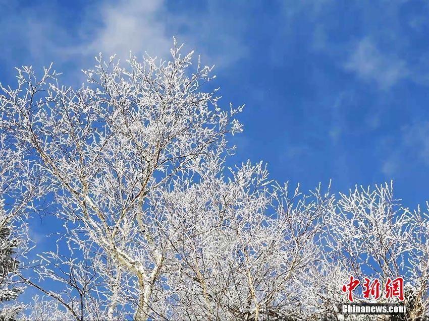 吉林延边金秋十月现雾凇美景