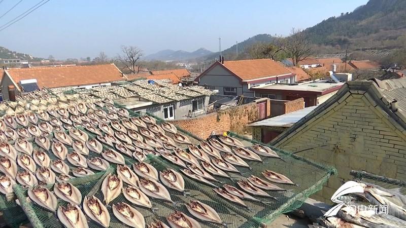 """吃貨看過來! 記者探訪青島漁村 帶你看美味的""""甜曬魚""""如何做成"""