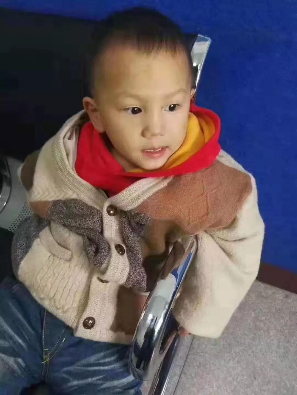 最新!萊西遭遺棄3歲男孩的父親被采取強制措施