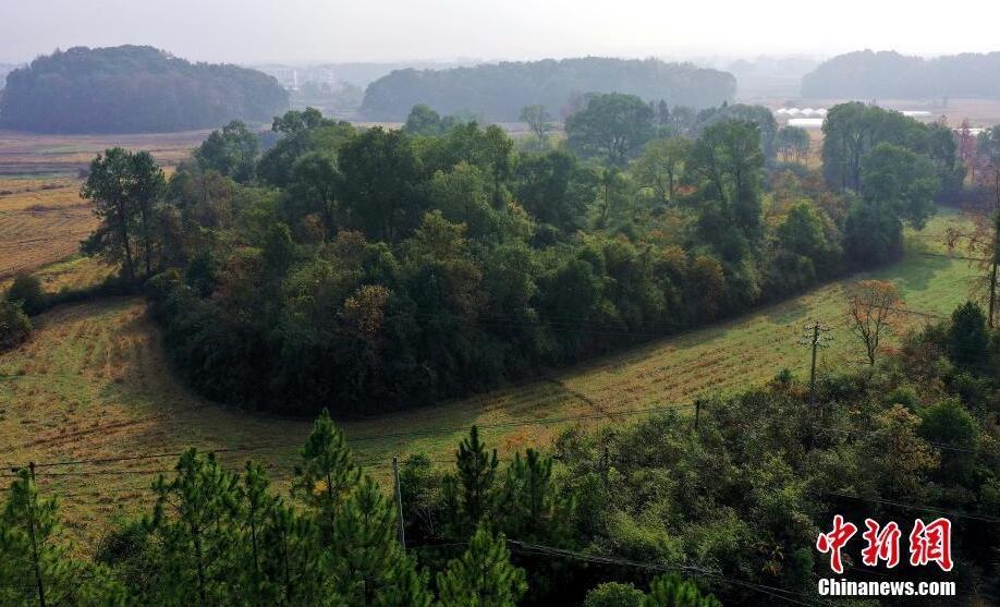 网赚经验:江西吉水发现一处史前遗址 距今约5000年