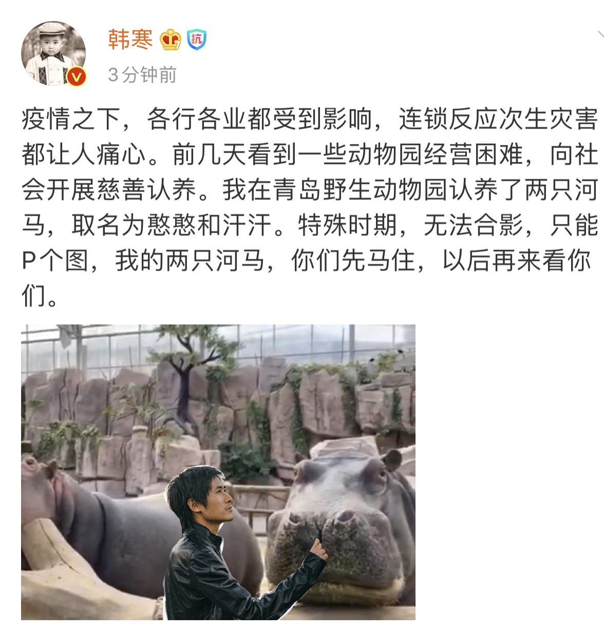 视频:韩寒认养青岛野生动物园河马 取名憨憨和