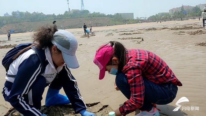 """带上铲子和食盐沙子口海滩赶海去 蛏子""""一挖一麻袋"""""""