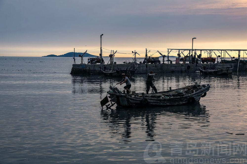 黄山海蜇大丰收 跟船出海见证捕捞作业全过程