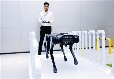 http://www.reviewcode.cn/yunjisuan/175886.html