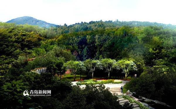 李群挥锨铲土植树为岛城添一抹绿色