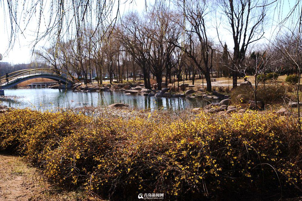 【春游季】世纪公园春色撩人 划船赏花踏青去