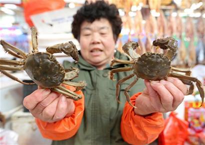 大闸蟹抢占市场品蟹正当时 价格不升反降