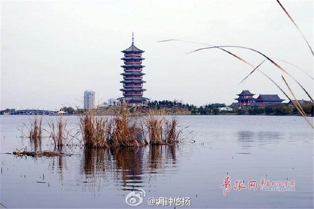 http://news.qingdaonews.com/images/attachement/jpg/site1/20161127/485d60dc3ea019a51d0c01_small.jpg /enpproperty-->    少海湿地公园是中国最大的以城市防洪功能为主导的国家4A级湿地公园。经过多年建设,这片曾经的荒滩不仅克服了种种困难,成长为碧波粼粼、水鸟翻飞的生态天堂,而且通过湿地,流经胶州的云溪河、三里河和大沽河被连成一片,困扰胶州多年的洪涝灾害问题也得到改善。正值初冬时节,公园内色彩缤