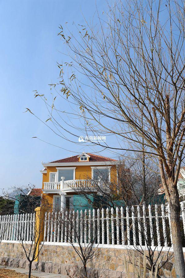 高清:冬游崂山会场村 感受文艺的海边洋房 - 青岛新闻