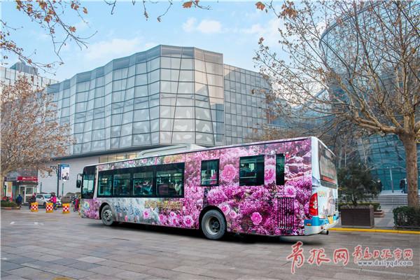 西海岸旅游形象登上济南公交线 9大景点美翻