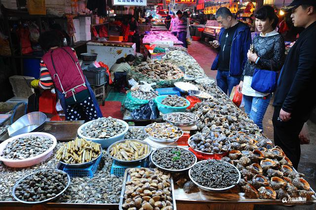 市场海鲜贝类图片名称